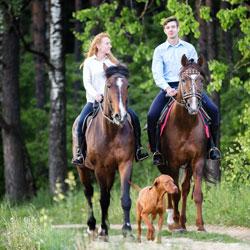 Actividad paseos a caballo